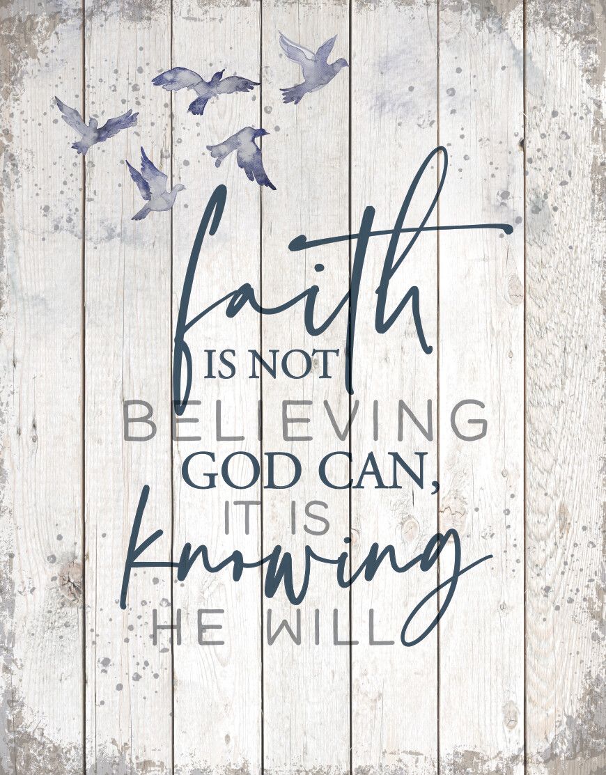 Faith is Not-3013-HEM