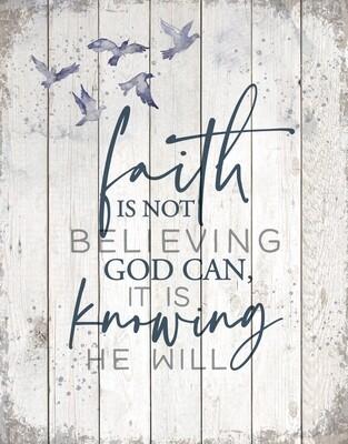 Faith is Not-3013-HEM