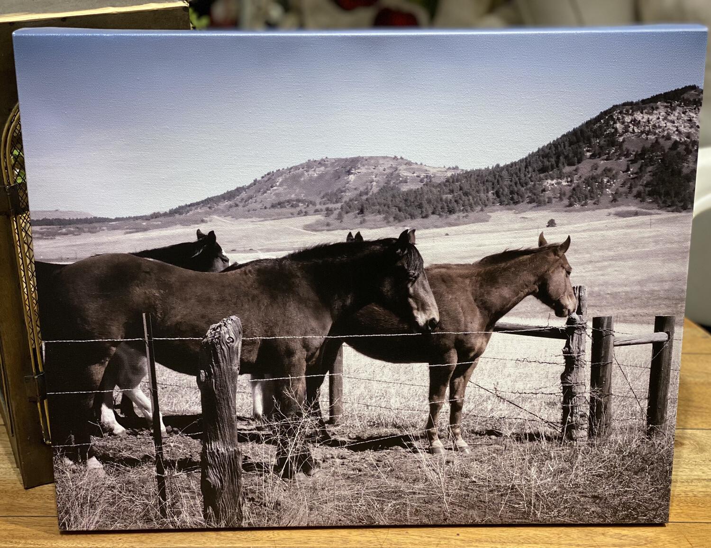 Monument Horses - HEM