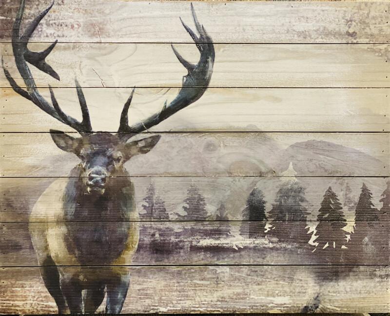 Wildlife Pail-lit Print - LCAN