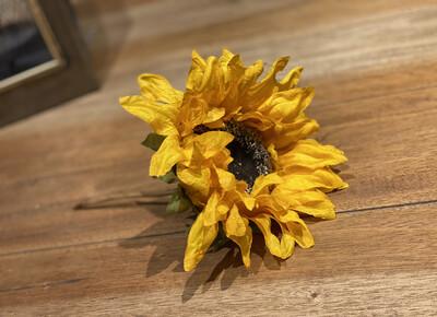 White & Yellow Sunflowers-2170-HEM