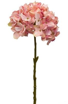 Pink Hydrangea - 2846 - HEM