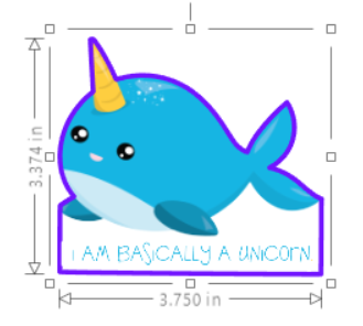 Narwhal 01