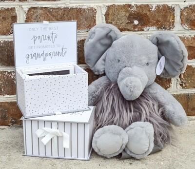 Pregnancy Announcement Gift Set