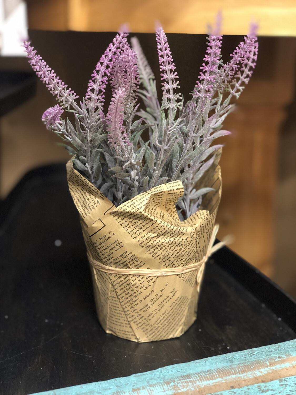 LG Lavender