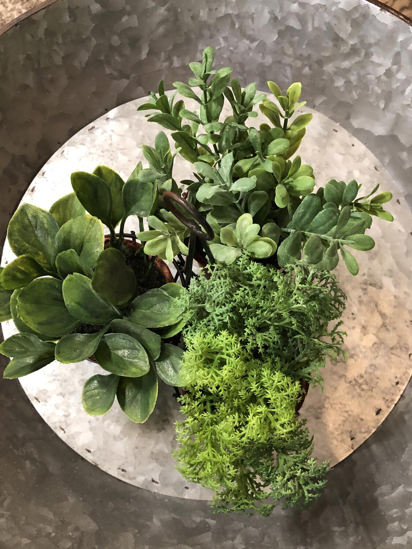 Tripod w\Plants