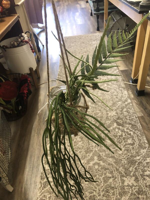 LG Succulent Hanger