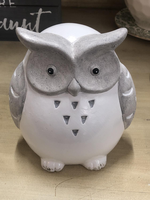 Grey White Owl