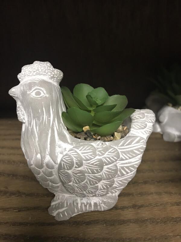Succulent Animal