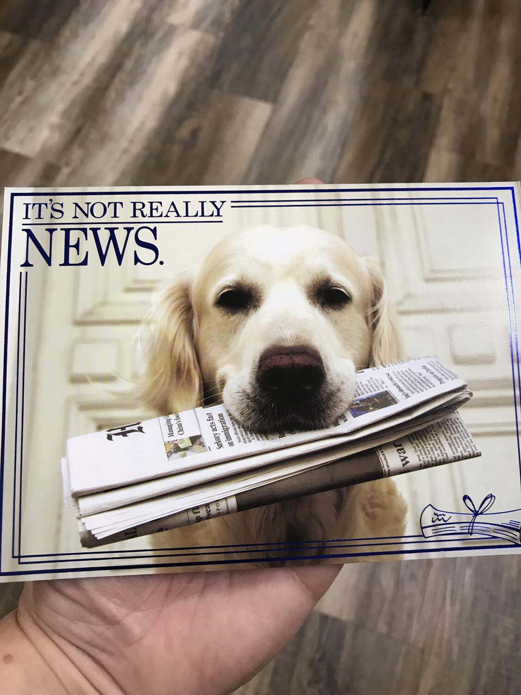 Dog Holding Paper