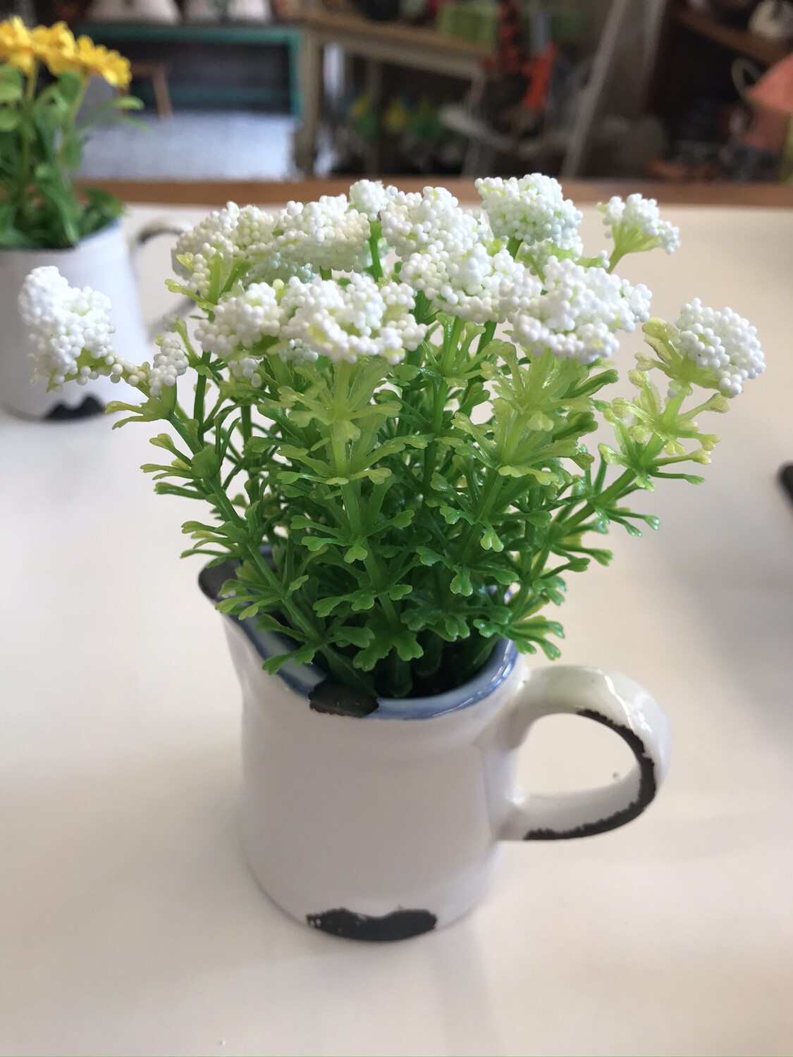 Flowers in Pitcher