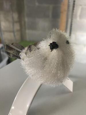 White Bird Clip