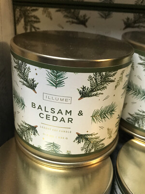 Balsam & Cedar LG TIn