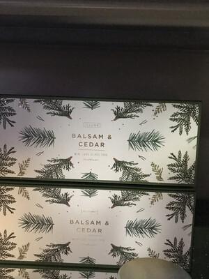 Balsam & Cedar Set