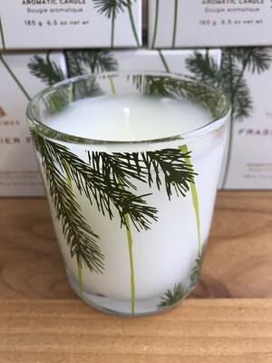 Frasier Fir Pine