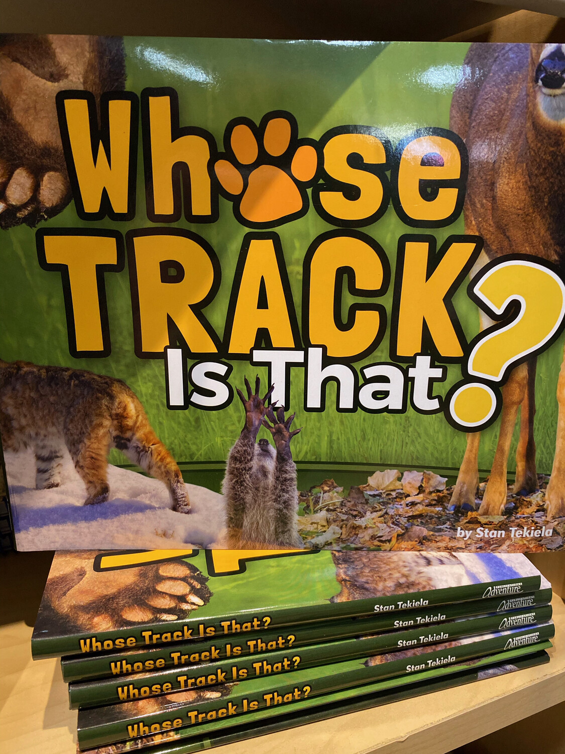 Whose Track Is That