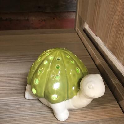 Ceramic Turtle Light Up