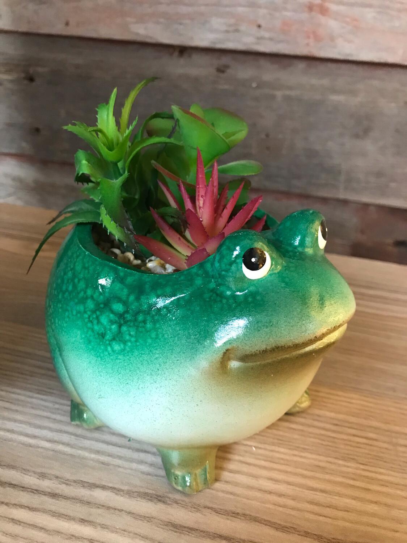 Ceramic Succulent Frog Planter