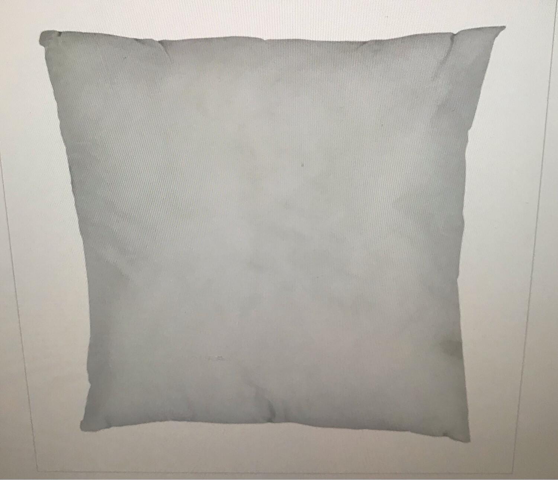"18"" Pillow Form"