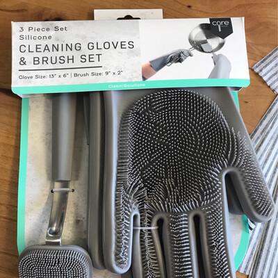 Silicone Gloves & Brush Set