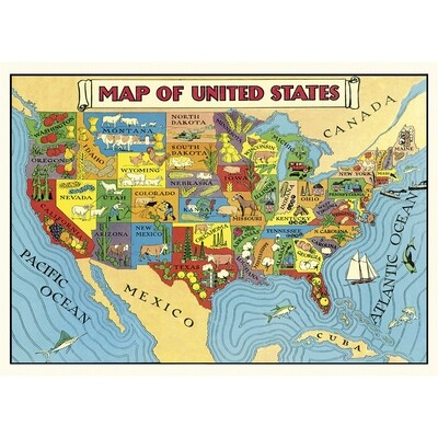USA Map 2 Poster #405