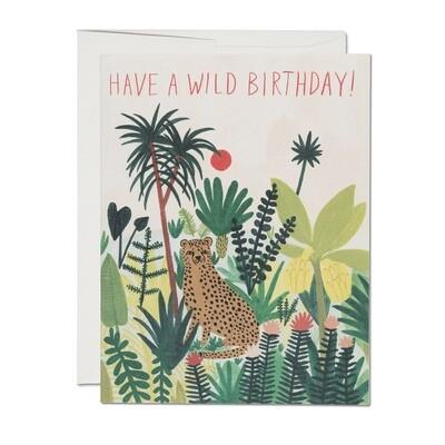RC23 Cheetah Birthday Card