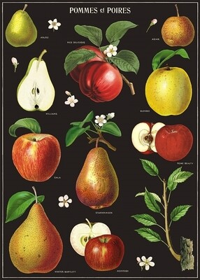 Apples + Pears Poster #300