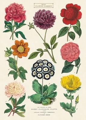 British Flower Garden Poster #102