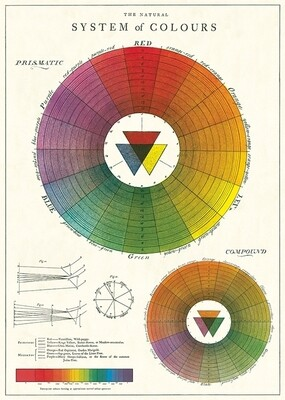 Color Wheel Poster #308