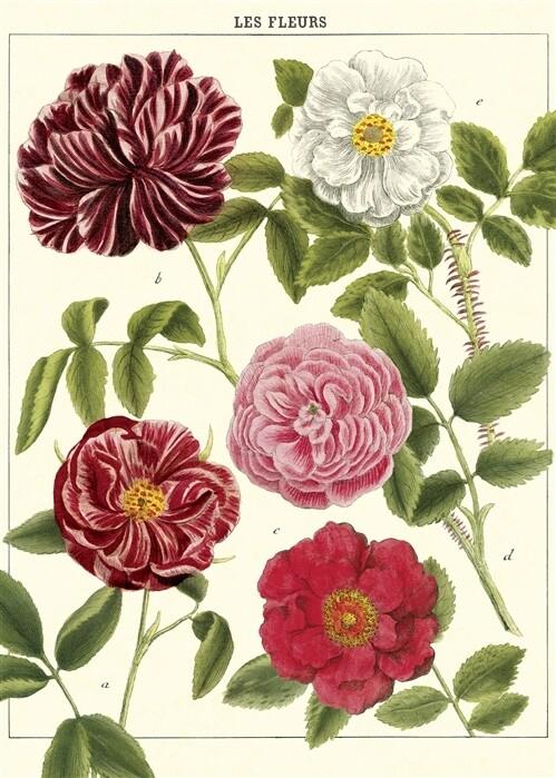 Les Fleurs Poster #114