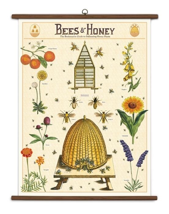 Bees + Honey Large School Chart