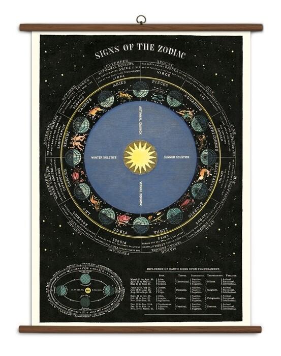 Zodiac Large School Chart