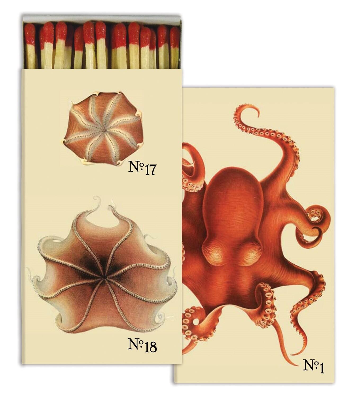 Octopus Matches