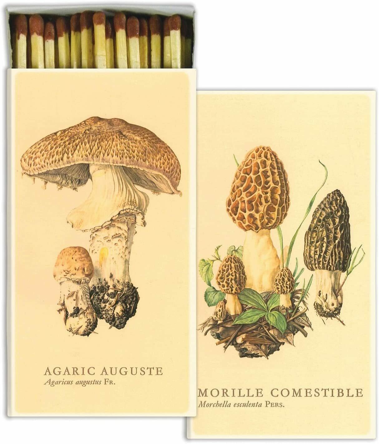 Mushrooms Matches
