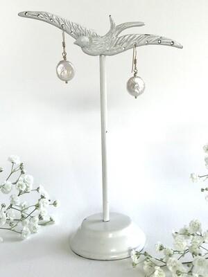 Venus Coin Pearl Earrings - GDFDE8