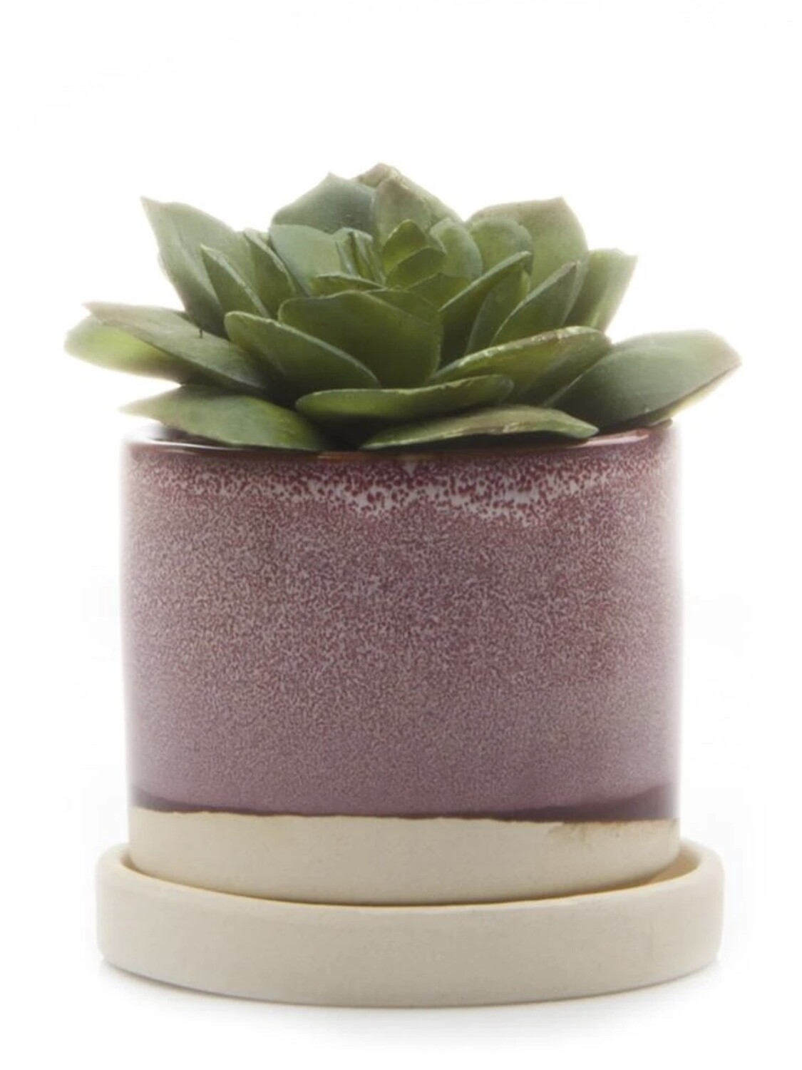 Chive Burgundy Minute Ceramic Pot- MIPSBU