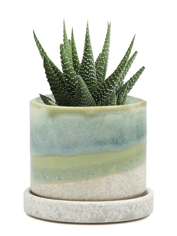 Chive Green Cement Minute Ceramic Pot- MIPSGC