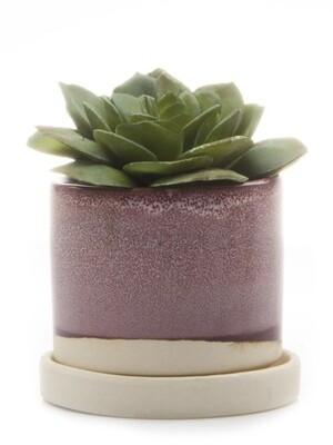 Chive Burgundy Minute Ceramic Pot- MIPSBU