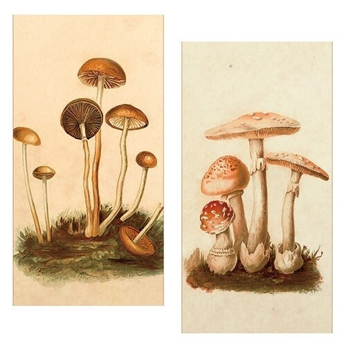Vintage Mushrooms Matches