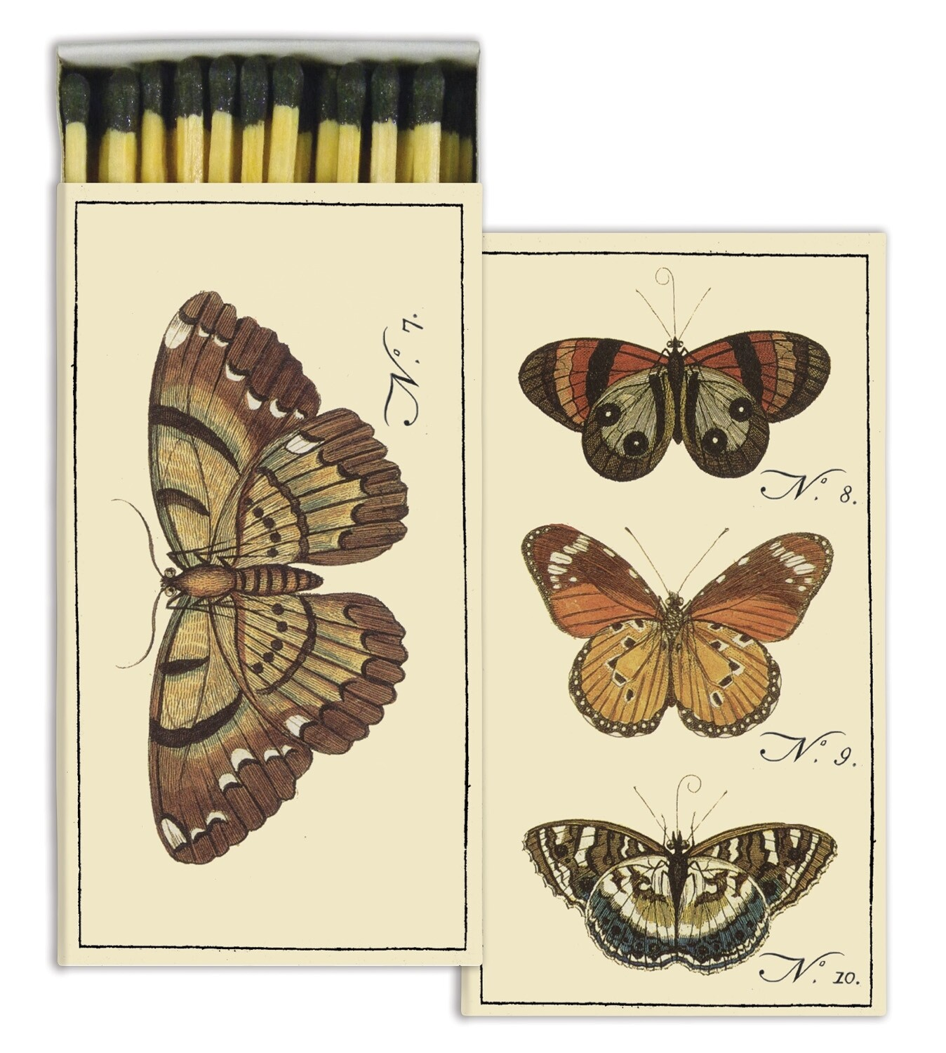 Insect - Butterfly Matches