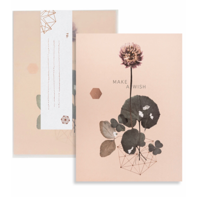 Make A Wish Clover Greeting Card - PAC123