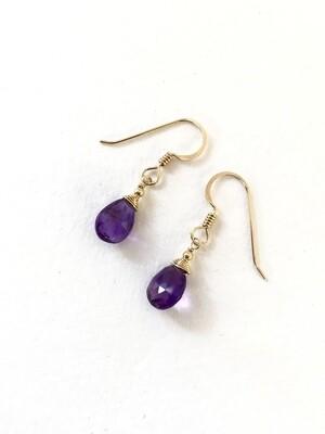 Amethyst Minerva Gold-Filled Earrings - GDFDBE1 -AME
