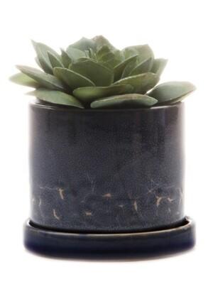 Chive Cosmos Minute 2 Ceramic Pot- MIPSCO
