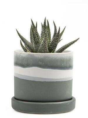 Chive Matte Green Minute 2 Ceramic Pot- MIPSMG