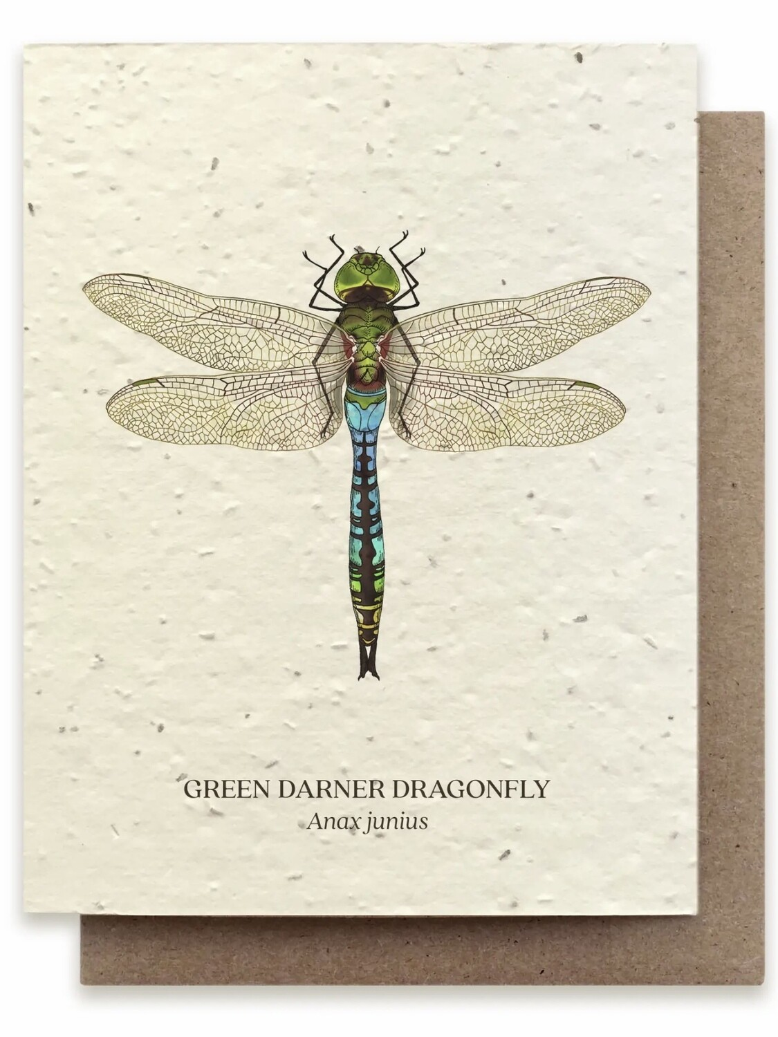 Dragonfly Greeting Card - Plantable Wildflower Seed Card - BC101