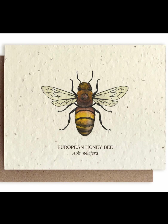 Honey Bee Greeting Card - Plantable Wildflower Seed Card - BC104