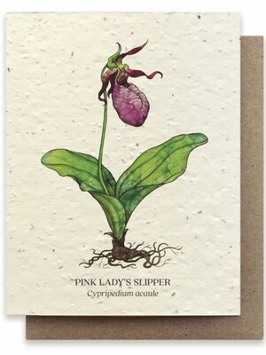 Lady Slipper Botanical Greeting Card - Plantable Wildflower Seed Card - BC106
