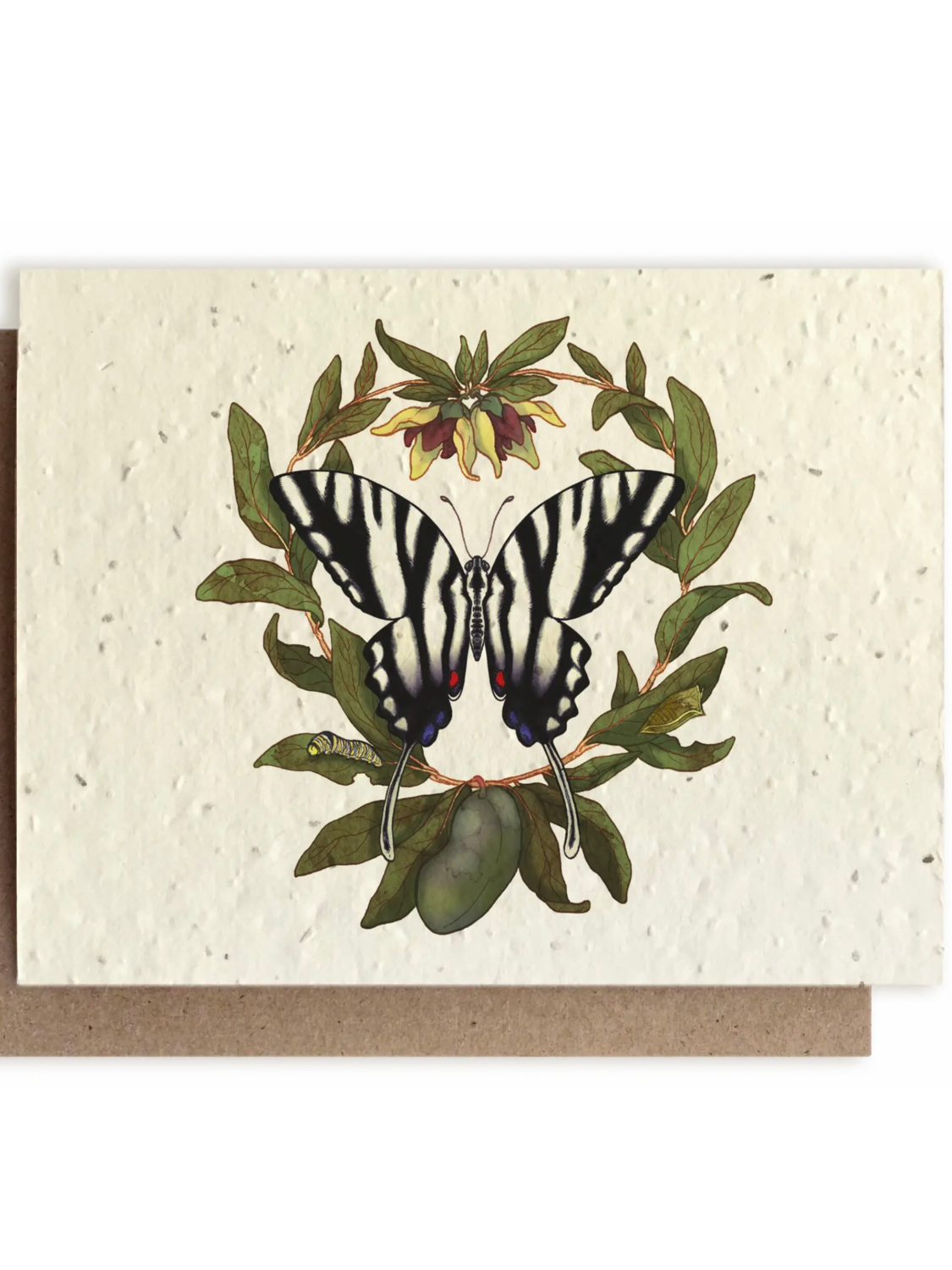 Zebra Butterfly and Paw Paw Greeting Card - Plantable Wildflower Seed Card - BC111
