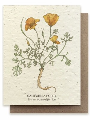 California Poppy Greeting Card - Plantable Wildflower Seed Card - BC100