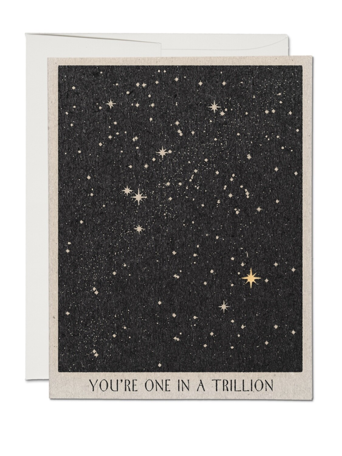 One In A Trillion Greeting Card - RC68